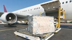 Strong December Lifts 2016 Air Freight Demand - IATA